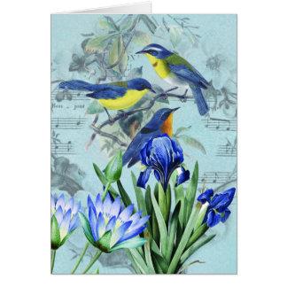 Pájaros cantantes florales ropa y regalos del vint tarjetas