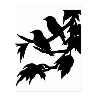 pájaros cantantes tarjetas postales