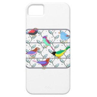 Pájaros coloreados brillantes en un enrejado iPhone 5 Case-Mate carcasas
