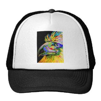 Pájaros coloridos cabeza y pico gorros