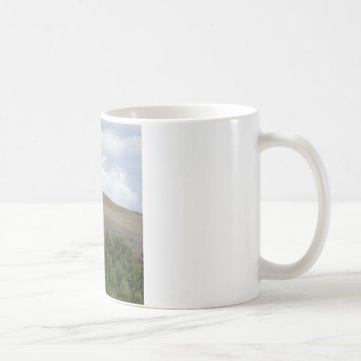 Pájaros de arriba taza de café