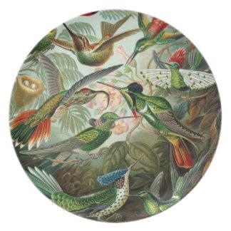 Pájaros de Haeckel Platos De Comidas