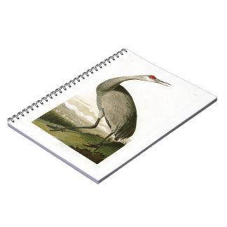 Pájaros de John James Audubon de la grúa de Libro De Apuntes Con Espiral
