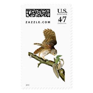 Pájaros de John James Audubon del búho barrado de Timbres Postales