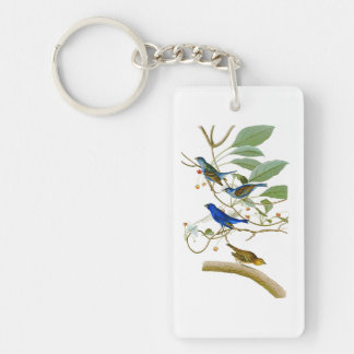 Pájaros de John James Audubon del empavesado de Llavero Rectangular Acrílico A Una Cara