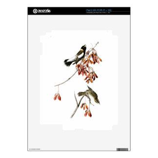 Pájaros de John James Audubon del pájaro del arroz Calcomanías Para El iPad 2