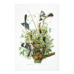 Pájaros de John James Audubon del pájaro que Papelería De Diseño
