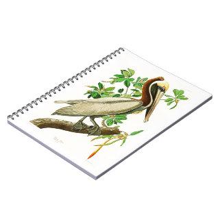 Pájaros de John James Audubon del pelícano de Libreta Espiral
