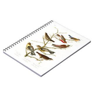 Pájaros de John James Audubon del pinzón del Libreta Espiral