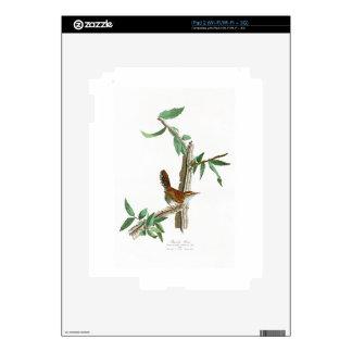 Pájaros de John James Audubon del Wren de Bewick iPad 2 Calcomanías