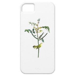 Pájaros de Juan Audubon de la curruca de los niños iPhone 5 Fundas