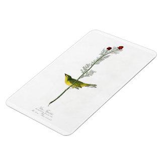 Pájaros de Juan Audubon del Flycatcher de Selby de Rectangle Magnet