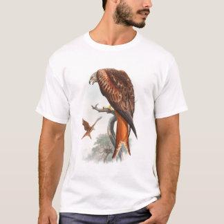 Pájaros de Juan Gould del halcón de Glead de la Playera