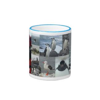 Pájaros de la Antártida Taza De Dos Colores
