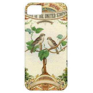 Pájaros de la cubierta del iphone 5 de Estados Uni iPhone 5 Case-Mate Protectores