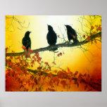 Pájaros de la fauna impresiones