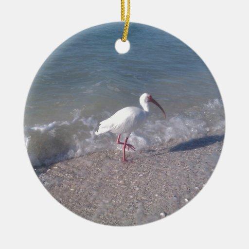 Pájaros de la Florida Ornamento Para Reyes Magos