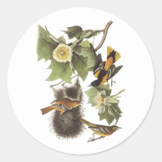 Pájaros de la jerarquización pegatinas redondas