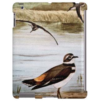Pájaros de la lavandera y del tipo de tero funda para iPad