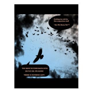 """""""Pájaros de la migración en la agitación """" * Postal"""