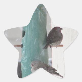 Pájaros de la nieve pegatina en forma de estrella