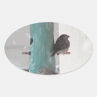 Pájaros de la nieve pegatina ovalada