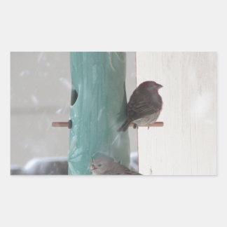 Pájaros de la nieve pegatina rectangular