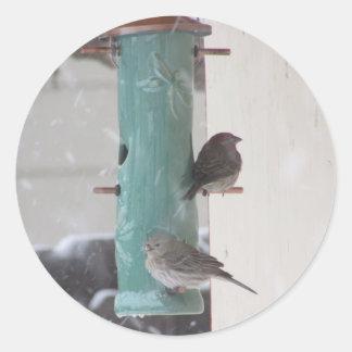 Pájaros de la nieve pegatina redonda