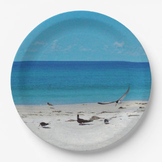 Pájaros de la playa en la resaca platos de papel
