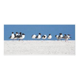 Pájaros de la playa invitaciones personales