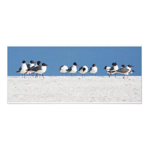 """Pájaros de la playa invitación 4"""" x 9.25"""""""