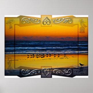 Pájaros de la playa que empapan en borde anaranjad póster
