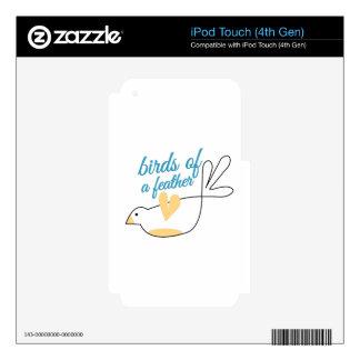 Pájaros de la pluma iPod touch 4G calcomanía