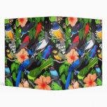 Pájaros de la selva de la carpeta de México