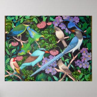 Pájaros de la selva del poster de Asia Póster