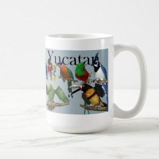 Pájaros de la taza de Yucatán
