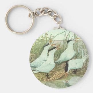 Pájaros de la vida marina del vintage, aves llavero redondo tipo chapa