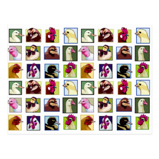Pájaros de las aves: Aves (pollo, pato, ganso, Postal