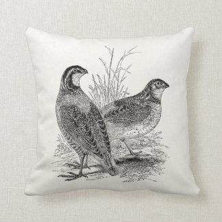 Pájaros de las codornices del vintage - pájaro de cojín