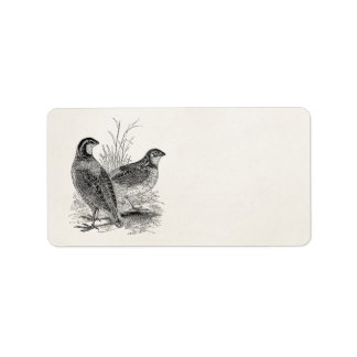 Pájaros de las codornices del vintage - pájaro de etiquetas de dirección