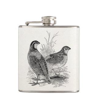 Pájaros de las codornices del vintage - pájaro de petaca