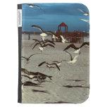 Pájaros de las gaviotas en la foto de la playa de