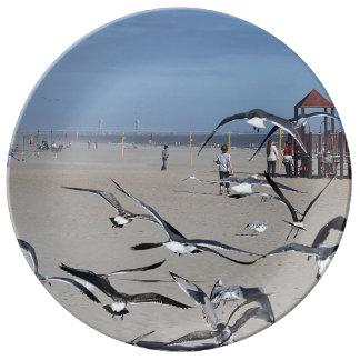 Pájaros de las gaviotas en la foto de la playa de plato de cerámica