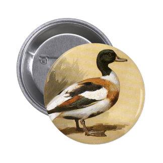 Pájaros de los animales salvajes del vintage, pato pin redondo 5 cm