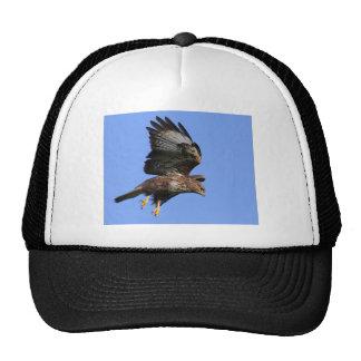 Pájaros de los gorras de la presa