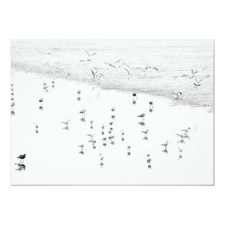 Pájaros de mar en la invitación de la playa
