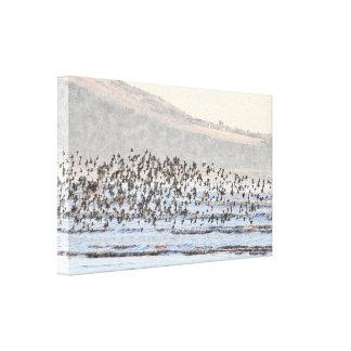 Pájaros de mar en la lona envuelta costa impresion de lienzo