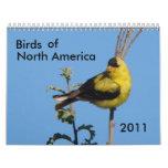 Pájaros de Norteamérica 2011 Calendarios