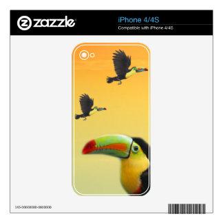 Pájaros de Toucan Calcomanías Para El iPhone 4S