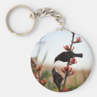 Pájaros de Tui en el lino de Nueva Zelanda Llavero Redondo Tipo Pin